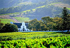 Picture of Stellenbosch